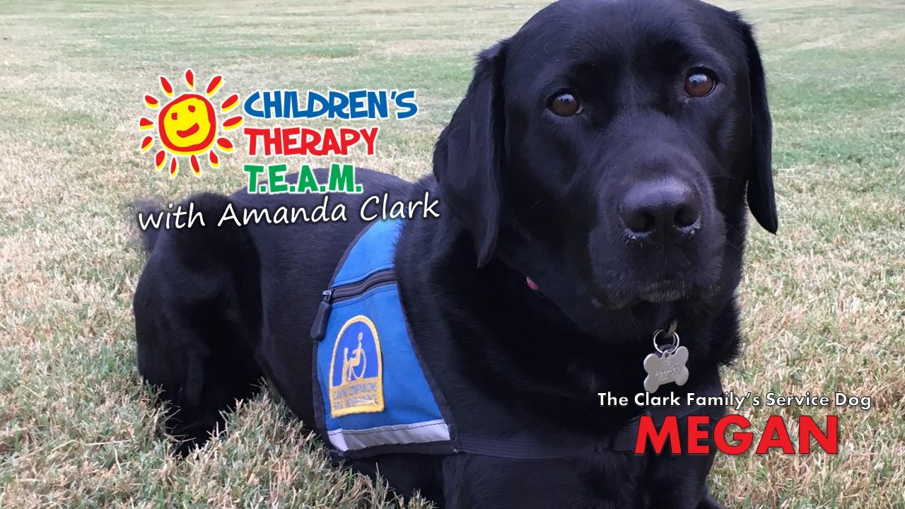 Amanda Clark: My Family's Journey with a Service Dog